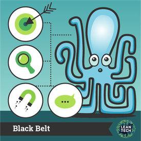 blackbelt_leansixsigma.jpg